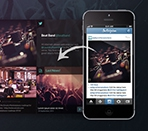 Twitter, Instagram and facebook feed grid Thumbnail